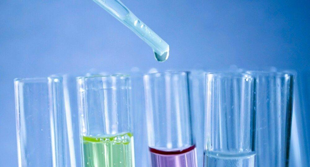 Lutte contre le cancer et le Covid-19: les scientifiques misent sur les cellules souches
