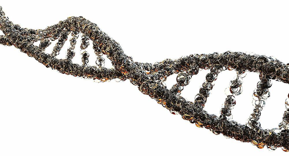Des gènes capables de lutter contre le cancer découverts par des scientifiques