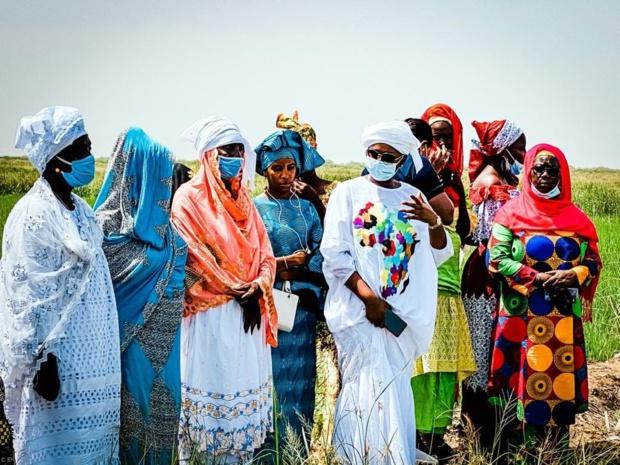 Financement de la campagne hivernale 2020 pour les femmes agricultrices: La Bicis alloue 350 millions Cfa aux membres du Refan