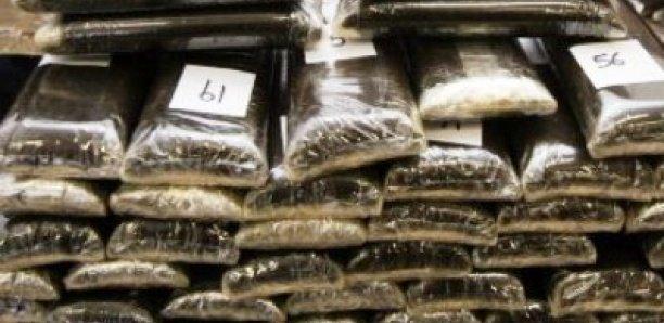 Un Nigérian dissimule 10 boulettes de cocaïne dans ses parties intimes
