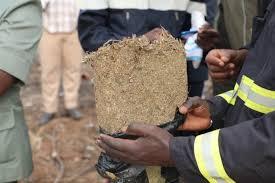 Trafic de drogue: une quarantaine de kilos de yamba saisis par l'Ocrtis