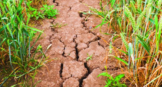 Le changement climatique et ses conséquences s'accélèrent, prévient l'ONU