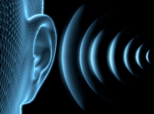 REVELATION : Deux personnalités politiques portent des appareils auditifs qui coûtent 10 millions de FCFA