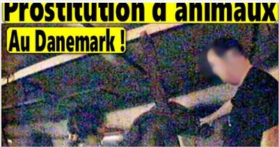 ZOOPHILIE: La prostitution des animaux avec les humains est légalisée au Danemark