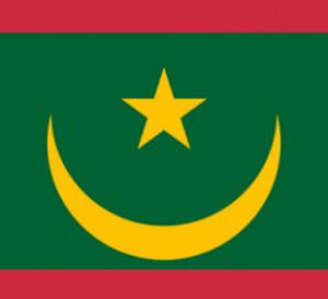 Mauritanie : le changement de drapeau et la suppression du Sénat sont officiels