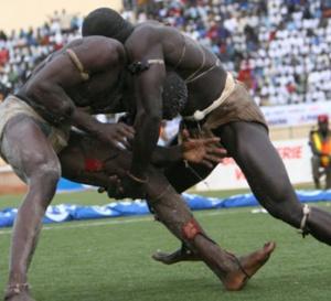 Le Sénégal compte 3500 lutteurs, selon le décompte du Cng
