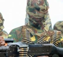 Arrêté pour terrorisme présumé : Aziz Dia, ancien étudiant de l'UCAD, combattant de Boko Haram