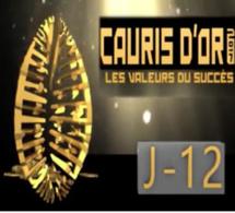 """CAURIS D""""OR 2017 COMPTE A REBOURS JOUR J 12 CAURIS D'OR."""