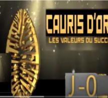 JOUR J- 06 DES CAURIS D'OR 2017: MICRO TROTTOIR. QU'EN PENSE LES SENEGALAIS? REGARDEZ