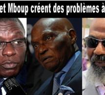 Crise au Parti démocratique sénégalais: A qui profite le chaos?