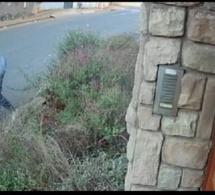 Afrique du Sud: La défense d'une étudiante attaquée par des bandits enflamme la toile…vidéo