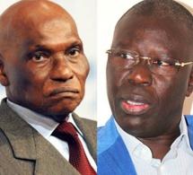 """Babacar Gaye : «Oumar Sarr est le secrétaire général adjoint du Pds et coordonnateur du parti, donc numéro 2 du Pds"""""""