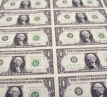 Touba : Trois frères tombent avec des coupons de faux billets de 50 dollars