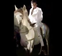 Concert Au Stade : Sidy Diop vêtu tout blanc sur un cheval blanc… Mystique ou Scène