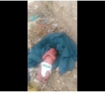 VIDEO: Un bébé jeté dans les poubelles: Acte de barbaries comment peut - on faire ça à un bébé. REGARDEZ