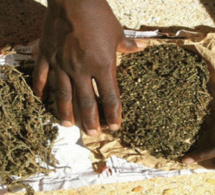 Trafic de drogue : Malick Ndiaye et Babacar Touré risquent 2 ans et 3 ans de prison ferme