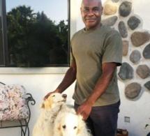 Etats-Unis: Il promène ses chiens, on l'arrête car il est Noir