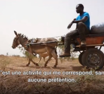 Des stades au champ, découvrez la toute nouvelle vie de Ferdinand Coly, ancien international sénégalais