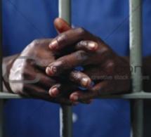 Double assassinat de la Rue Carnot avec soupçons d'homosexualité : Lamine Dabo renvoyé devant la Chambre criminelle