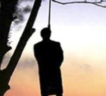 Mont-Rolland : Adjoint du secrétaire municipal, Wilfred Diop retrouvé pendu à un manguier