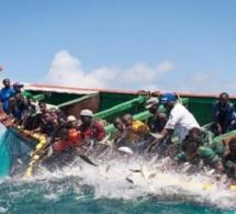 Saint-Louis: les corps des pécheurs disparus, retrouvés au Cap Vert