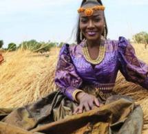 Découvrez Le nouveau clip de Coumba Gawlo – SIYO ( Clip Officiel )