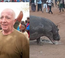 L'hippopotame abattu, par le chasseur François Uart sur ordre, Moustapha Diakhaté étale sa colère