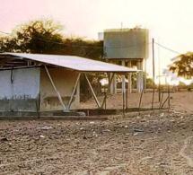 LOUGA YANG- YANG: : À LA DÉCOUVERTE DE GOULOUM