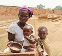 SECNSA - Insécurité alimentaire au Sénégal : Plus de 1,8 millions de personnes touchées
