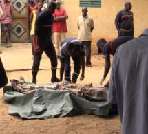Horreur à Ziguinchor : Un homme retrouvé mort, son corps criblé de balles