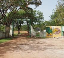 Scandale au Parc Niokolo Koba: le Conservateur et son adjoint limogés et remplacés