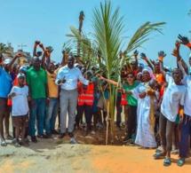 Programme de remplacement des palmiers de la Corniche avec le ministre Abdou K. FOFANA et l'association Ecolibri