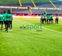 CAN 2019: Direct Caire: Les lions ont effectué une reconnaissance de la pelouse avant d'affronter la Tanzanie !