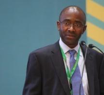 Hippolyte Fofack : « La digitalisation pourrait catalyser le processus d'industrialisation de l'Afrique »