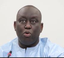 Ismaïla Madior Fall sur l'affaire Petro Tim : « Aliou Sall n'est pas encore un suspect »