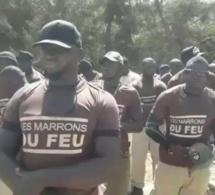 Manifestation « Marrons du feu » à Mermoz: plusieurs arrestations enregistrées