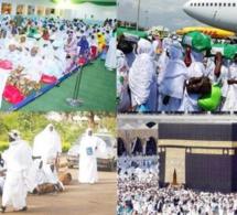 Hajj-2019 : le retour amer de plus de 10 000 pélerins
