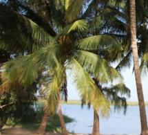 Pollution de l'eau à Saint-Louis: Les populations de Bango exposées à toute sorte de maladies
