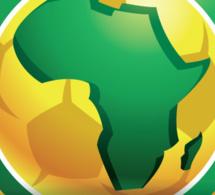 Le coach adjoint du Mali tire sur la Caf : ''Ce sont des vrais marionnettes pour la Fifa''