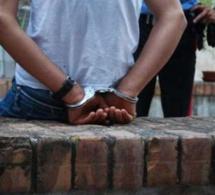 1 tonne de chanvre indien saisie à Mbour : le trafiquant s'approvisionnait à partir de Ziguinchor