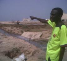 Mbao - Expropriation de terres - Mame Boye Diao et le Gouverneur de Dakar cités, 31 milliards F CFA en jeu