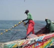 Sécurité en mer au Sénégal : vers une ''solution innovante'' de suivi VMS adaptées aux petites embarcations pour leur géolocalisation
