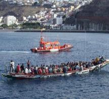Baisse de l'émigration clandestine: les candidats sont fatigués ou c'est la Guardia Civil qui veille au grain?
