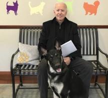 Etats-Unis : le nouveau président Joe Biden s'est fracturé le pied en jouant avec son chien