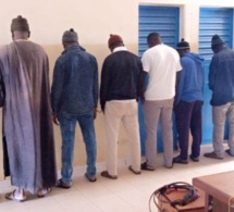(Arrêt sur images) DIOGO : Des voleurs de bétail arrêtés