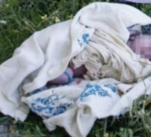 Djidah Thiaroye Kaw: Corps sans vie d'un bébé découvert aux abords du bassin de rétention