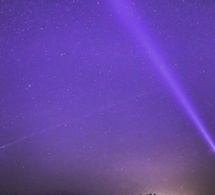 Images fascinantes d'un champ de poireaux sous ultraviolets