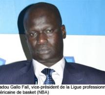 Afrobasket 2013 : les Lions auront besoin d'un coaching mental