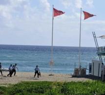 Attaque mortelle de Requin,à la Réunion