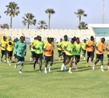 CAN 2021 - Sénégal vs Eswatini - Allez un brin de folie, les Lions!